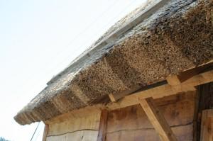 Камышовая крыша